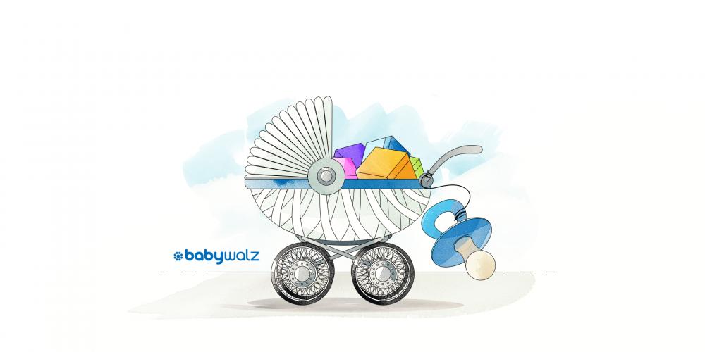 Google Shopping Success: baby-walz