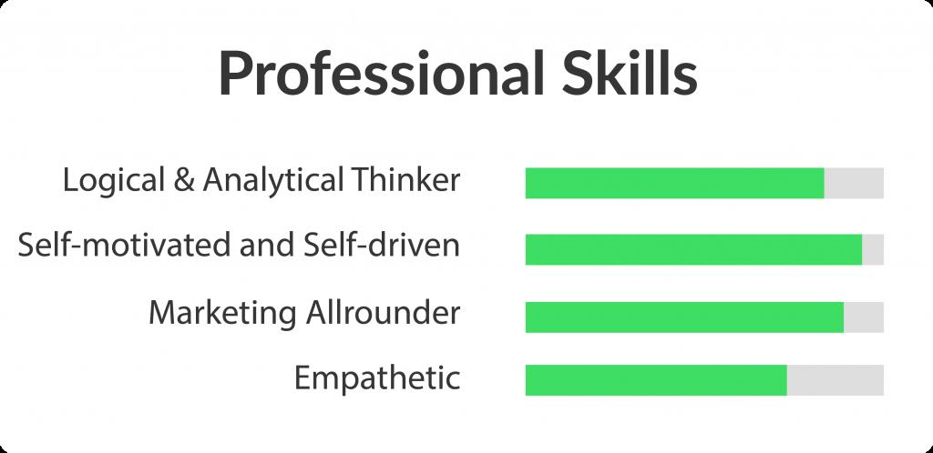Professional Skills Hans-Peter Manzenreiter